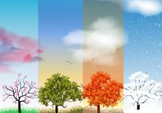 Four Seasons Spring, Summer, Autumn, Winter Banners with Abstract Trees Infographic - Vector Illustration Four Seasons Painting, Four Seasons Art, Seasons Of The Year, Pastel Art, Art Plastique, Tree Art, Graphic Design Art, Painting Inspiration, Vector Free
