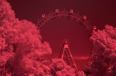 Vienna' s Ferris Wheel in infrared #vienna  #Wien #österreich  #austria  #infrared #infrarot #FerrisWheel #riesenrad  #prater   #Würstelprater #experimental #thirdman  #derdrittemann