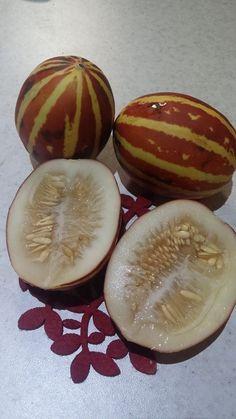 iranian fruit (shamameh)