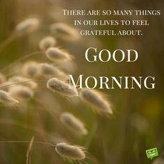 Are you searching for images for good morning motivation?Browse around this site for unique good morning motivation inspiration. These funny quotes will make you happy. Good Morning For Him, Good Morning Handsome, Good Morning Funny, Good Morning Picture, Morning Pictures, Good Morning Wishes, Good Morning Images, Funny Good Morning Messages, Happy Morning