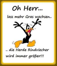 Oh herr lass mehr Gras wachsen - Cartoon Videos Kids For 2019 Unicornios Wallpaper, Funny Memes, Jokes, Funny Comments, Tabu, Life Lessons, Bible Verses, Funny Animals, Quotations