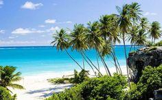 Voli dall'Italia per Barbados a partire da 397euro Vi piacere fare una vacanza sulle bellissime spiagge di Barbados? Ecco per voi i voli più convenienti dall'Italia per la capitale dell'isola Bridgetown,  con prezzi a partire da 397 euro. Ecco tutti  #barbados #vacanza #voli #bridgetown