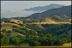how it looked when driving up through Santa Barbara to get to Ray's lay over ranch near Solvang~empty & beautiful.