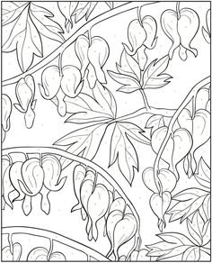 Welcome to Dover Publications - Creative Haven Floral Design Color by Number Coloring Book / artwork by Jessica Mazurkiewicz Flower Coloring Pages, Coloring Book Pages, Flower Crown Drawing, Bleeding Heart Flower, Bleeding Hearts, Color By Numbers, Dover Publications, Silk Painting, Colorful Pictures