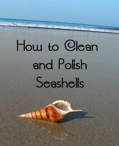 Fantastic Cleaning hacks are offered on our internet site. look at this and you wont be sorry you did. Deep Cleaning Tips, House Cleaning Tips, Cleaning Hacks, Diy Hacks, Cleaning Recipes, Beach Crafts, Diy Crafts, Creative Crafts, Adult Crafts