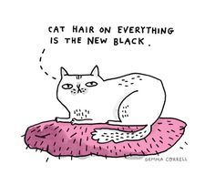 Cat hair on everything is the new black...gemma correll