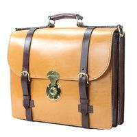 """Album """"Alfred Wallace Briefcase"""" by JP Marcellino"""
