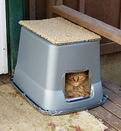 this is a heated cat house that will keep your outside cat warm and . , The Very Best Cats, Homemade Outdoor Feral Cat Shelter , Cat Conta. Feral Cat House, Feral Cat Shelter, Outdoor Cat Shelter, Cat House Diy, Outdoor Cats, Feral Cats, Animal Shelter, Cat Shelters For Winter, Outside Cat House