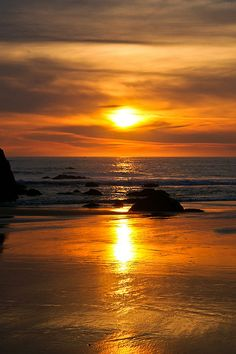 Sunset reflection on the westcoast, Brookings, OR. Oregon Road Trip, Road Trips, Sea And Ocean, Ocean Beach, Brookings Oregon, Jake Johnson, Versailles Garden, Amazing Pictures, Oregon Coast