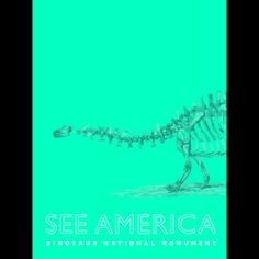 Dinosaur National Monument 1 by Darrell Stevens  #SeeAmerica