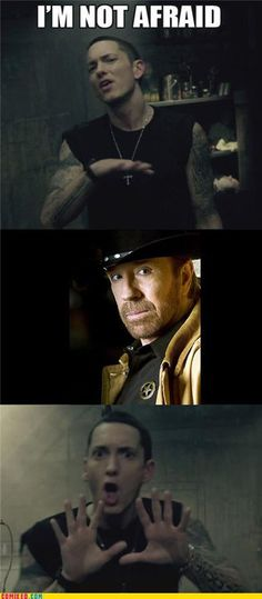 I'm such a sucker for Chuck Norris funnies :)