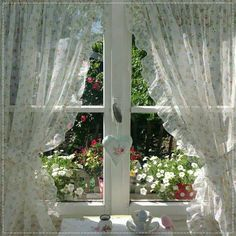Perfect Cottage Garden viewed from a  Perfect Cottage Window ....