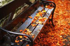 Park bench via Love of Autumn
