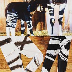 Imperfect Clizia SF Black Socks