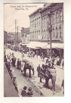 Awesome OLD Postcard Circus Titusville PA/Elephant Diamond Street Scene/Rustic Crawford County, Oil City, Old Photography, Safe Haven, Vintage Circus, Hd Desktop, Old Postcards, Genealogy, Pennsylvania