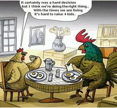 Chicken family planning.