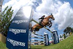 Olivier guillon - ambassadeur horsealot • Horsealot