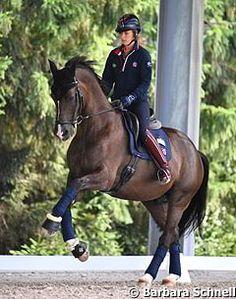 Valegro schooling - 2015 European Championships in Aachen/Eurodressage Pretty Horses, Horse Love, Beautiful Horses, Animals Beautiful, Horse Posters, Dressage Horses, Horse World, Horse Pictures, Show Horses