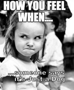 We will leave this here. #Allentown #dogs #pets #lehighvalley