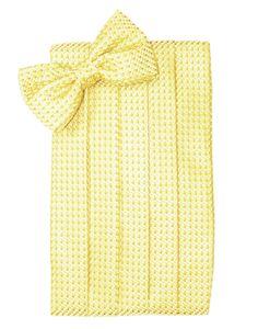 Rurah Women Solid Neck Tie Scarf Hairband Waist Thin Skinny Long Neckerchief,champagne