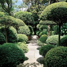 Holland Park. Japanese discipline is in congress with Italianate flamboyance in this English garden, in which box, privet and pots with herbs shape spaces into individual rooms, bringing the aromatic essence of the house into the garden - and vice versa.