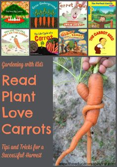 Tips and Tricks for Growing Carrots with Kids | Carrot Picture Book List