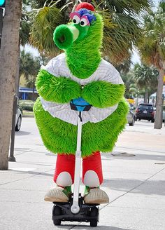 #Phillie #Phanatic sightseeing in #Clearwater, #Florida by segway