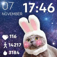 The Bunny Cat waits for you to add it on your fitbit smartwatch!