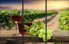 Üzüm Bağlarında Şarap Kadehi