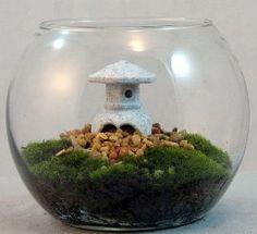 Tranquility Terrarium With Live Moss U0026 Japanese Lantern