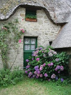 La Briere  Bretagne  France