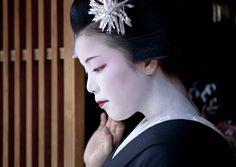 Hassaku Evening - Maiko Ayano