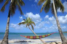 La plage des Salines au sud de la Martinique. L'inverse d'un havre de paix, c'est la plus fréquentée de l'île. Mais un paysage à couper le souffle, et sous les cocotiers, plein de petits restaurants sympas où se régaler entre deux baignades.
