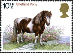 Royal Mail's Special Stamps gallery and archive Uk Stamps, Postage Stamps, Royal Mail, Zebras, Great Britain, Pet Birds, Pony, Poster, Horses