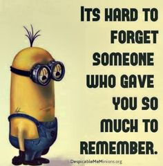 Funny Minions Quotes Of The Day 310706 09