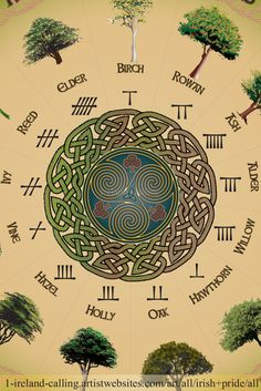 Beautiful Ogham calendar print showing the 13 months of the year named after the Ogham trees, symbols of ancient Ireland.