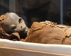 A picture of an alien mummy leaked from the Egyptian museum in Cairo, along with details concerning this perfectly preserved mummy. Did the ancient Egyptians get help from outer space!