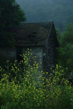 Old farmhouse and summer rain...