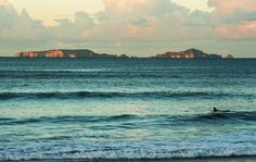 Sandy Bay, Tutukaka Coast, Northland, New Zealand New Zealand, New York Skyline, Coast, Waves, Beach, Outdoor, Outdoors, The Beach, Beaches