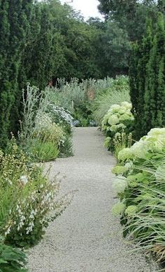 Natural Gardens | White and green naturally planted garden with gravel paths