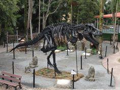 """POMERODE (SC) – Os dinossauros que invadiram a cidade mais alemã do Brasil vão contar agora com a """"companhia"""" do paleontólogo Bruno Gonçalves Augusta, na Vila Encantada."""