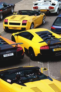 Lamborghini everywhere