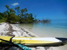 STAND    UP   PADDLEBOARD SUP Florida Keys