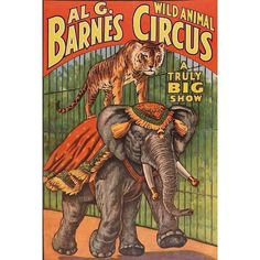 Al G. Barnes Circus Poster, 1960 (6.420 UYU) ❤ liked on Polyvore featuring home, home decor, wall art, elephant wall art, barn wall art, tiger poster, elephant poster and tiger wall art