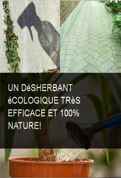 Un désherbant écologique très efficace et 100% nature! #Efficace #Ecologique #Desherbant Horticulture, Voici, Diy, Gardens, Recipe, Growing Weed, Natural Remedies, Backyard Farming, Bricolage