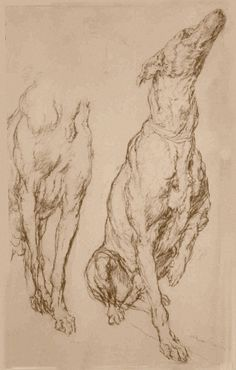 Sketches by Anthony van Dyck.jpg (988×1550)
