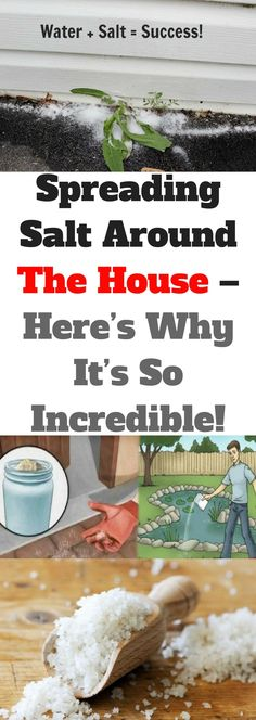 Spreading Salt Around The House – (Here's Why It's So Incredible)!!