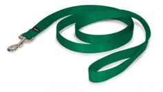 PetSafe Nylon Leash 1 x 6 Green >>> Want additional info? Click on the image.