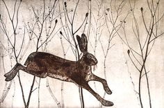 Kerry Buck - Startled Hare