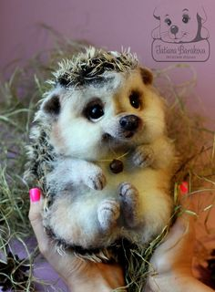Needle Felted Hedge Hog by Tatiana Barakova.  Авторские игрушки Татьяны Бараковой.
